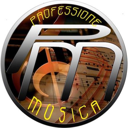 lista elettorale professione musica